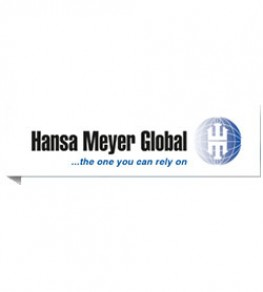 HANSA MEYER GLOBAL TRANSPORT, SA DE CV